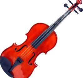 Detalhes do produto Violino - BVN1 - BENSON