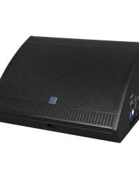 Detalhes do produto Monitor de Palco 500W – DFM1000 - DBR